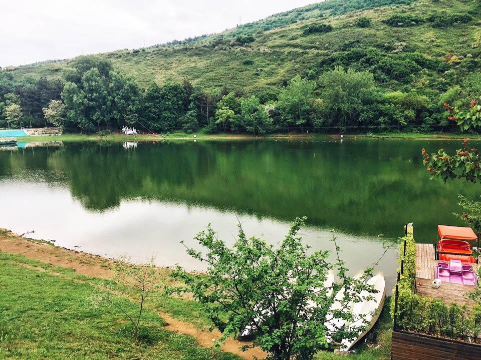 Достопримечательности Тбилиси Черепашье озеро
