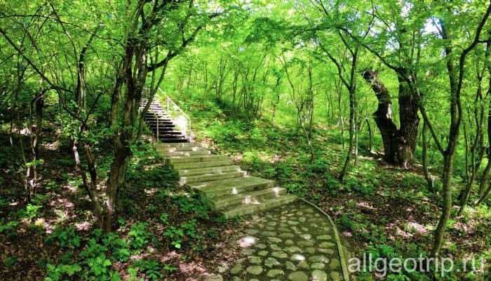 Дорога к источнику Святой Нино