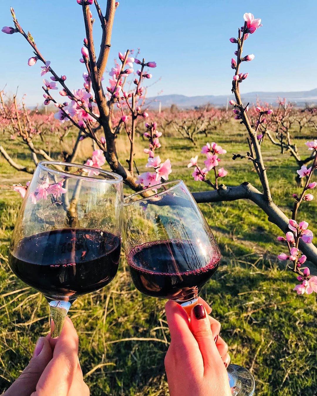 Вино Кварели